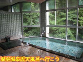 ふぢや旅館混浴の共同大浴場内風呂