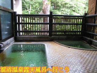 ふぢや旅館渓谷露天風呂と景色