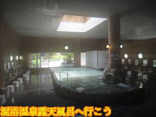 臥龍温泉 ひまわり、大浴場