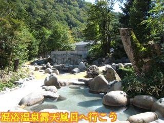 ひらゆの森露天風呂奥側を望む景色