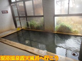 平湯プリンスホテル、男湯大浴場内湯