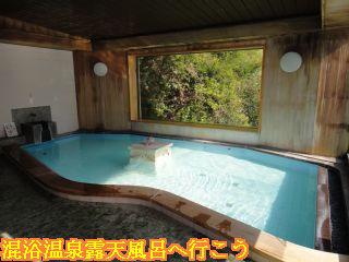龍峡亭大浴場、湯処「天龍の湯」内風呂
