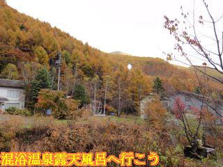 露天風呂から見える紅葉した山の景色