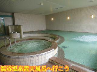 天然 鷲ヶ岳温泉、大浴場内風呂